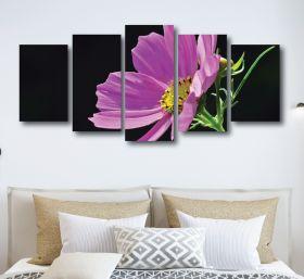 Cosmea Flower Canvas (1310 RMC 5 Panel)