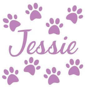 Personalised Name Wall Stickers - Cat Paws