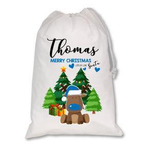 Extra Large White Santa Personalised Sack - Blue Reindeer XL