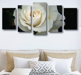 White Rose Canvas (1314 RMC 5 Panel)